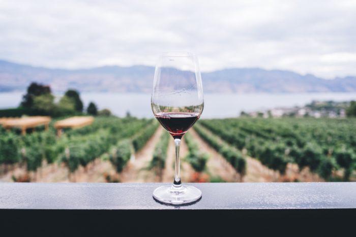 Ruta del Vino de Colchagua: Un panorama más que romántico